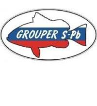 Лодки пвх Grouper
